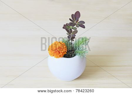 Orange Flower And Branches Of Blue Spruce And Barberry In A Vase