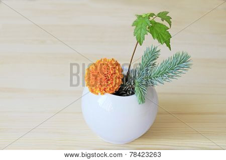 Orange Flower, Branches Of Blue Spruce And Shrubs In A Vase