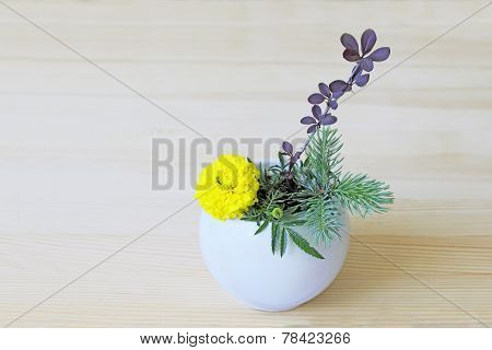 Yellow Flower, Branches Of Blue Spruce And Barberry In A Vase