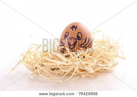 Photo of Drawn brown chick in the nest