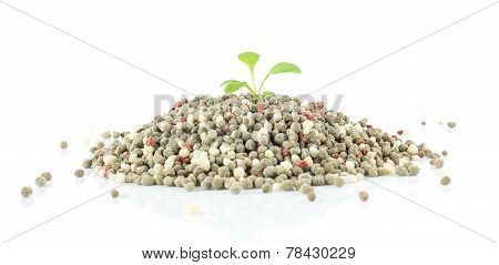 Chemical Fertilizer For Plant On White Background