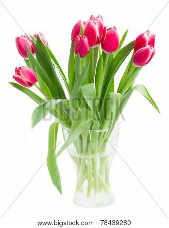 bouquet of    tulip flowers in vase