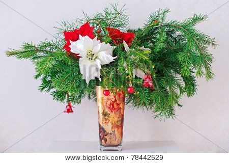 Brunch Fir Tree with young cone and poinsettia in vase