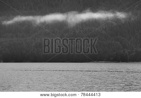 Landscape With Fog In Black And White. Vancouver. Canada