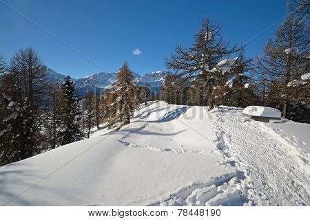 Back Country Skiing In Scenic Landscape