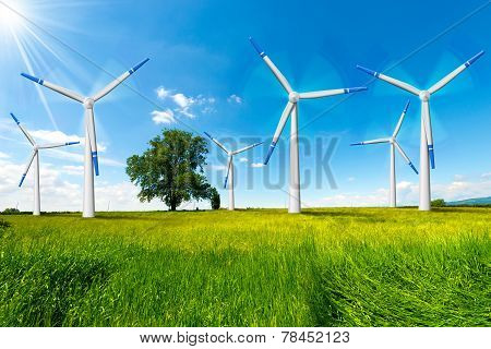 Electric Wind Generators In Countryside