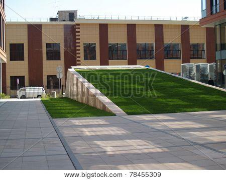 Grass Slide