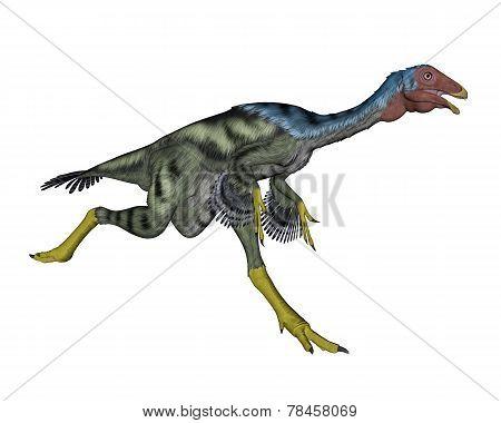 Caudipteryx dinosaur running- 3D render