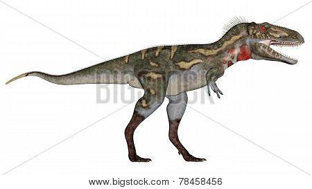 Nanotyrannus dinosaur walking - 3D render