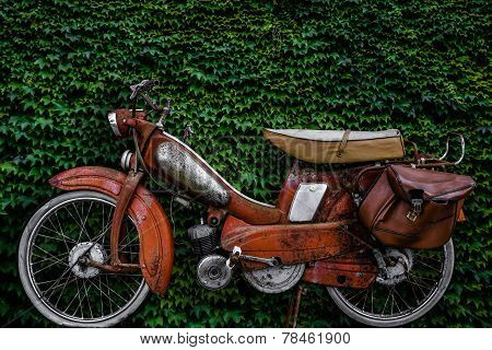 Vintage European Moped