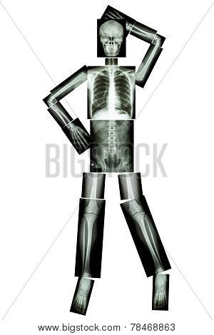 Sexy Skeleton