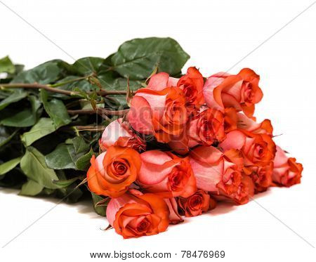 Colorful Flower Bouquet From Red Roses Isolated On White Background