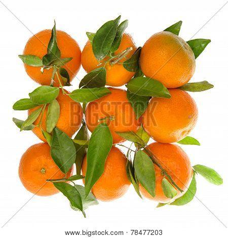 Orange Mandarine With Green Leaves. Top View Of Tangerine