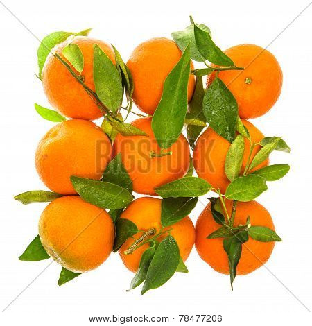 Orange Mandarine With Green Leaves And Water Drops