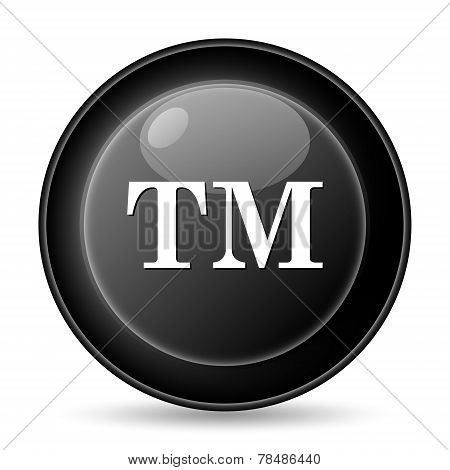 Trademark TM Icon