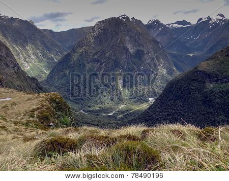 Scene From The Milford Track