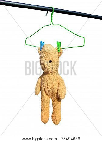 Teddy bear on hanger