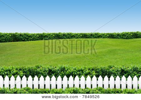 White Fence With Grass On Blue Sky