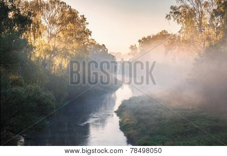 Autumn Fall landscape over foggy misty river