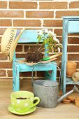 picture of flower pots  - Flowers in pot on chair - JPG