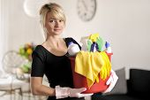 stock photo of cleaning house  - beautiful woman with detergent for cleaning house - JPG