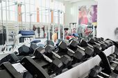 stock photo of racks  - Dumbells in a rack at the gym - JPG