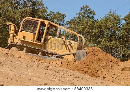 Bull Dirt