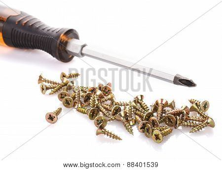 Screws and screwdriver