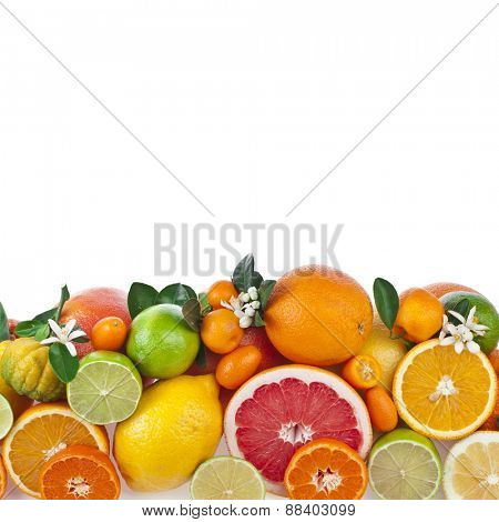 Border of  citrus fruits mixed close up  top view isolated on white background