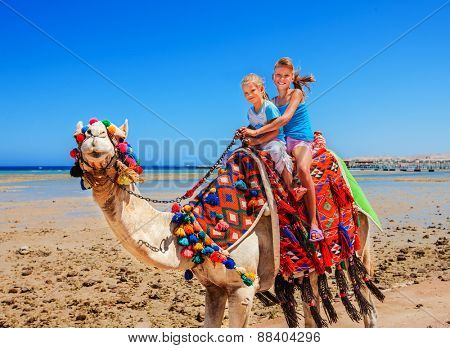 Tourists children riding camel  on the beach of  Egypt. Blue sky.