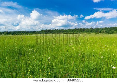 Scenic View Plain Nature