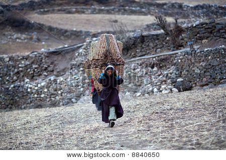 Tibetan Womans