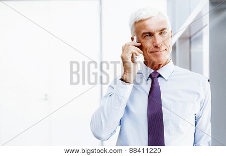 Businessman talking over phone in office