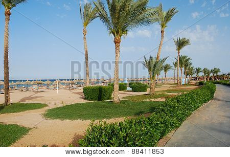 Luxury Resort Promenade  For Sea Shore  And  Garden In Egypt.
