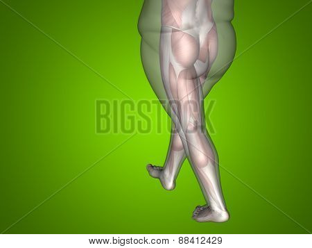 Concept or conceptual 3D fat overweight vs slim fit diet with muscles young man green gradient background