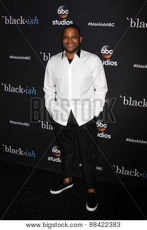 LOS ANGELES - FEB 17:  Anthony Anderson at the