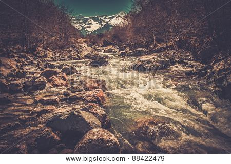 Fast river in mountain forest