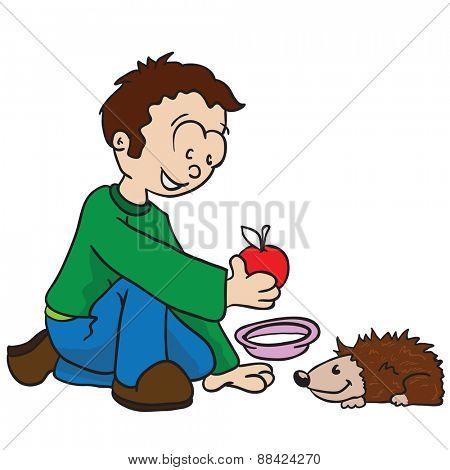 little boy feeding a hedgehog cartoon illustration