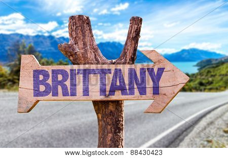 Brittany wooden sign with road background