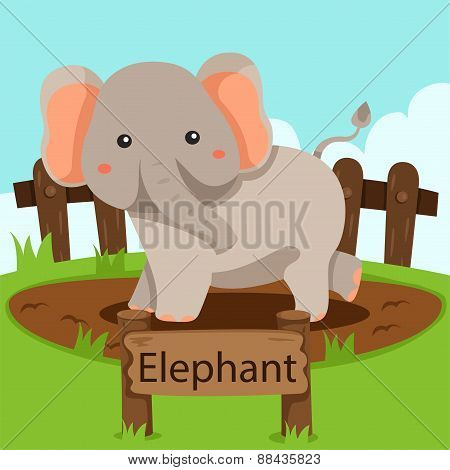 Illustrator of Elephant in the zoo