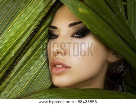 Makeup. Sexy Beautiful Woman Hiding Behind The Palm Leaves. Beautiful Stylish Woman With Smokey Eyes