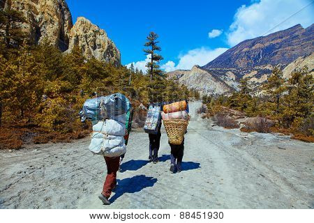 porters in the mountains