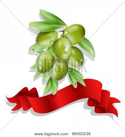 vector olive branch with red ribbon on white background ( isolated)