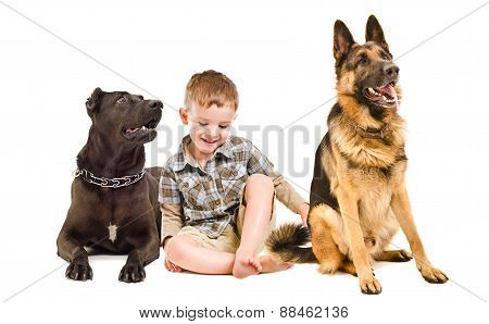 Laughing cute boy sitting with two dogs