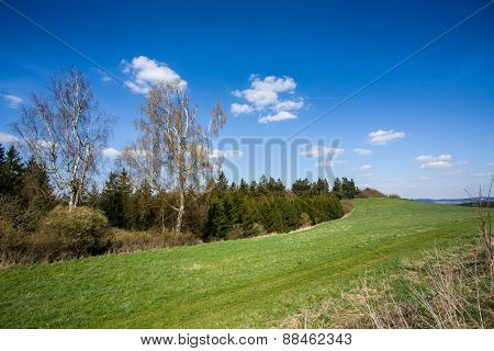 Rural Landscape With Trees Next To Meadows