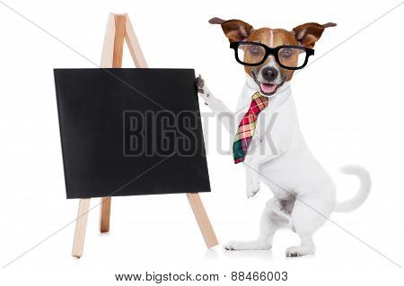 Business Dog With Blackboard