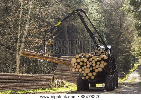 Special Tractors For Processing Of Harvested Timber In The Forest