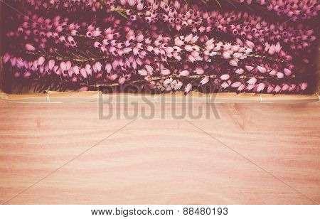 Flowery Heather Twigs On A Wood Surface