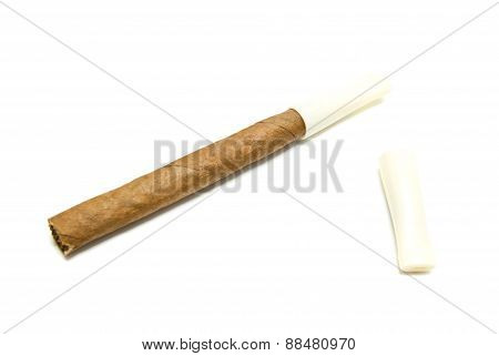 Single Cigarillo With Mouthpiece On White