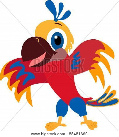 Vector colorful parrot